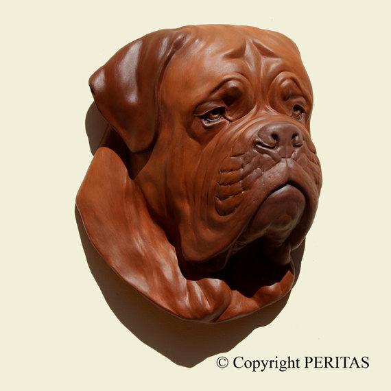Dogue de Bordeaux,mastiff,Toulouse,parisian,Bordeaux,alaunt,Molosser,history