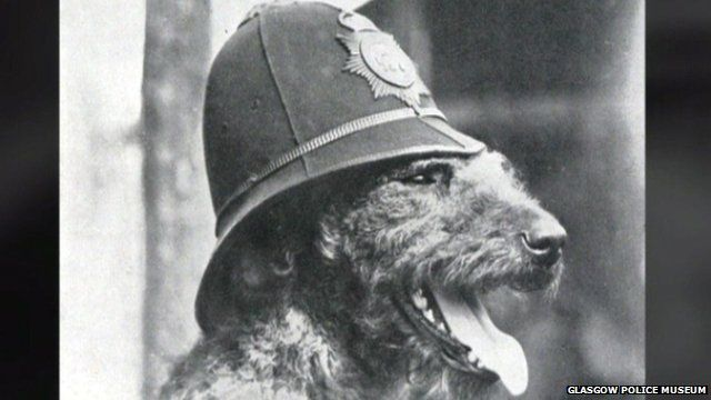 The Airedale Police Dog