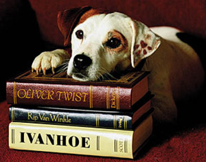 Jack Russell Terrier,Soccer,Wishbone,TV