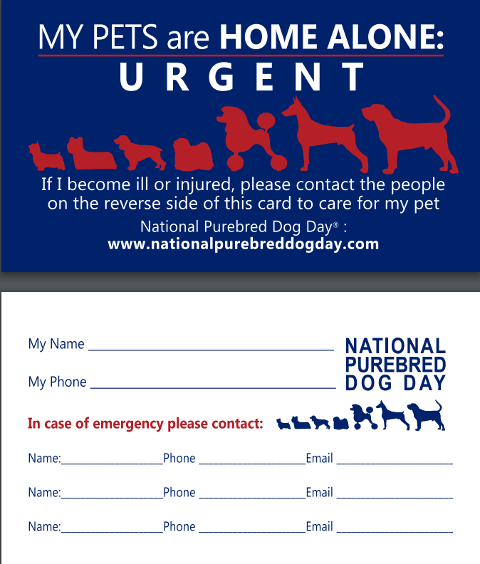 home alone,emergency,contact card