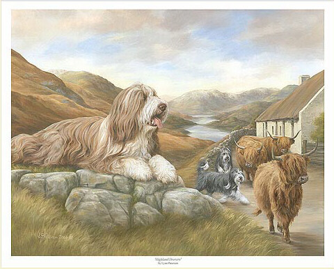 Polish Lowland Sheepdog,Bearded Collie,Old Welsh Grey Sheepdog,Hairy Moued Collie,Highland Collie,Mountain Scotch Collie,Loch Collie,Argle Bargle,herding,herding breed,breed history