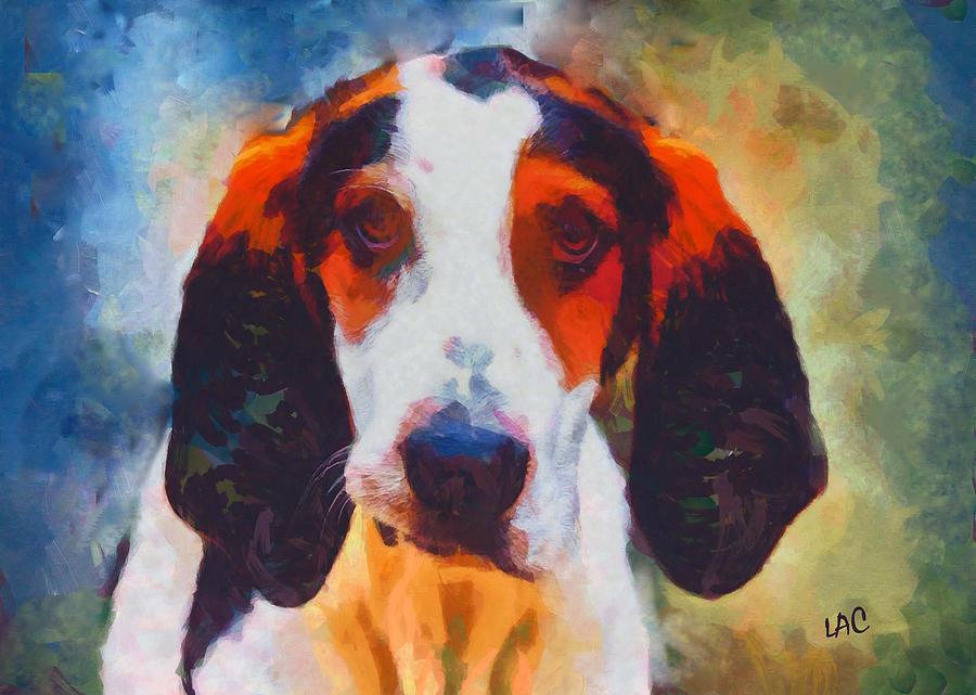Treeing Walker Coonhound,Roadie,Amputee dog