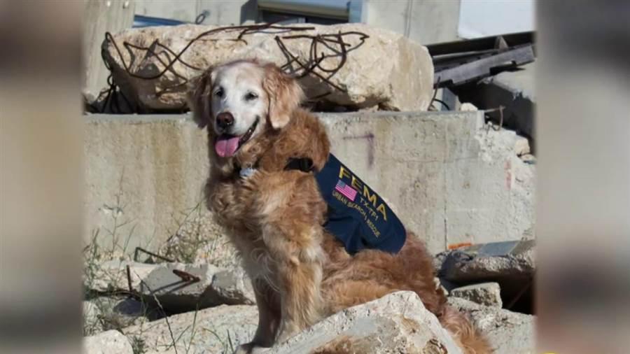 9/11,Search and Rescue, Bretagne,