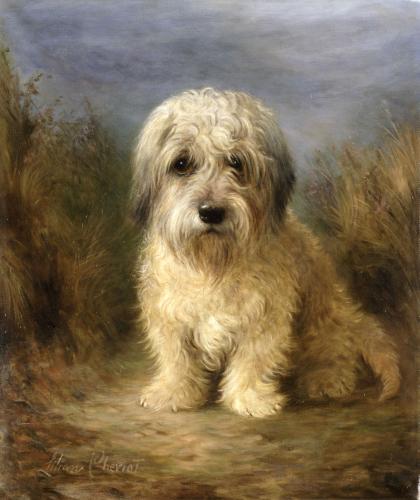 Dandie Dinmont Terrier,Guy Mannering,terrier,name,history