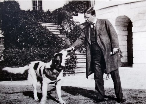 White House, terrier,St. Bernard,Teddy Roosevelt,Rat Terrier, Scottish Terrier, Bull Terrier, Fox Terrier, Manchester Terrier, Welsh Terrier,Airedale Terrier.