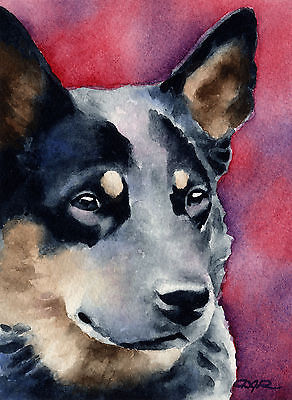 Australian Cattle Dog,coat,color