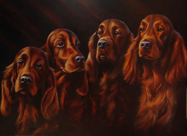 Irish Setter,history,breed history,Irish Water Spaniel,English Setter,Irish Water Spaniel,Springer Spaniel,Pointer,Gordon Setter