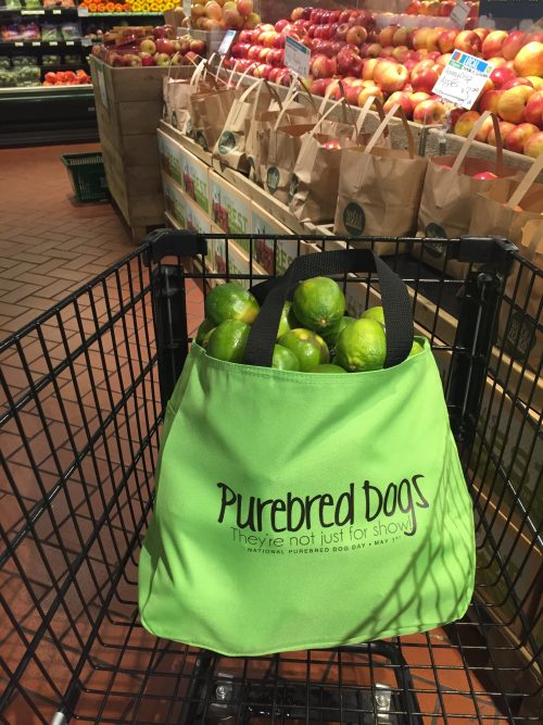 tote bag,lime green