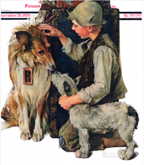 collie,norman rockwell