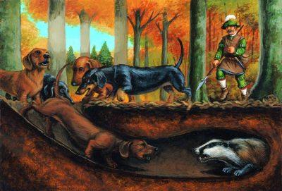 spoor,hunting dog,dachshund,