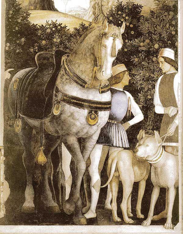 Cane Corso,Italian Mastiff, history,breed history