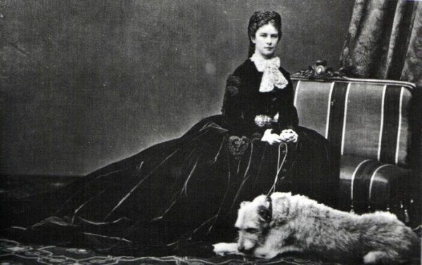 Cú Faoil,irish wolfhound,history