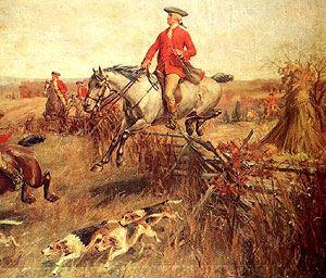 George Washington,Virginia Hounds,American Foxhound,foxhound