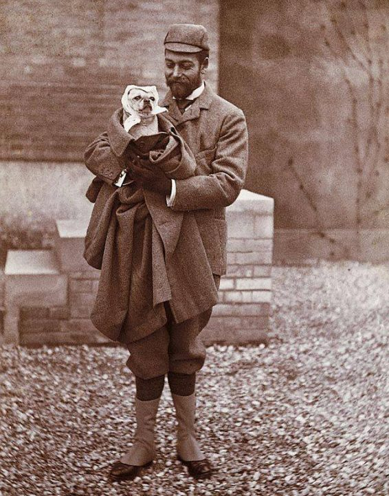 George VI,pug,Pembroke Welsh Corgi,Elizabeth I