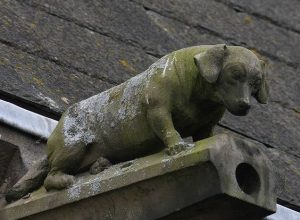 The Dachshund Gargoyle