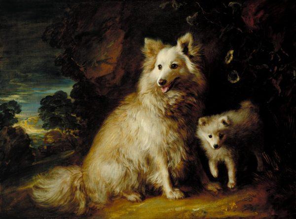 Thomas Gainsborough,art,pomeranian