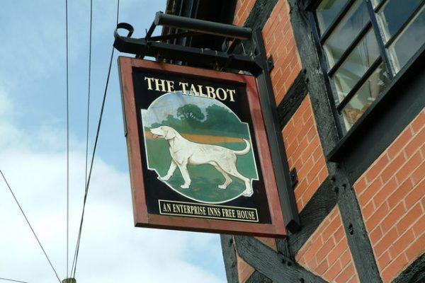 Talbot hound,boxer,hound,beagle,bloodhound,coonshound,billy, harrier,Limer, Limer Hound,Sleuth Hound