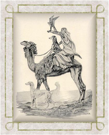 saluki,history,Persian Greyhound,Gazelle Hound,history,