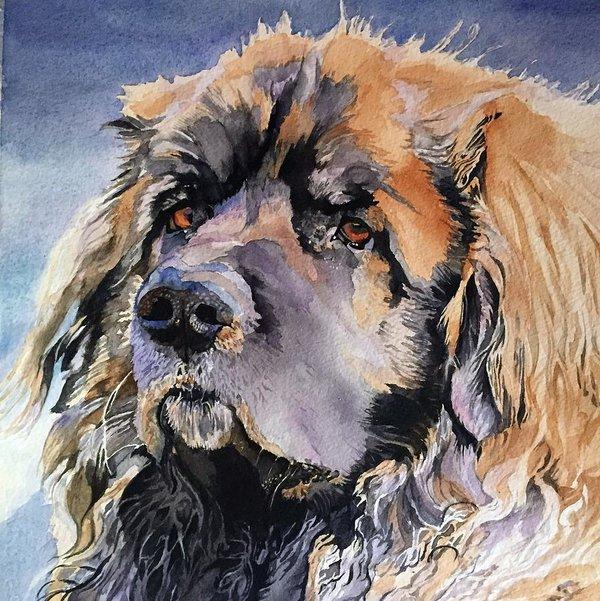 Heinrich Essig,Leonberger, Westminster Kennel Club Dog Show,Dario,