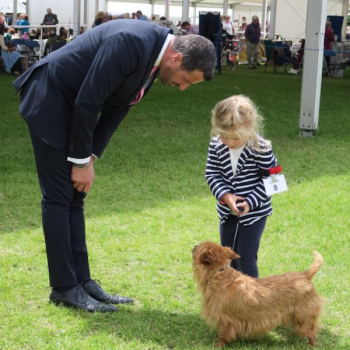 Youngest Person to Handle at Crufts?