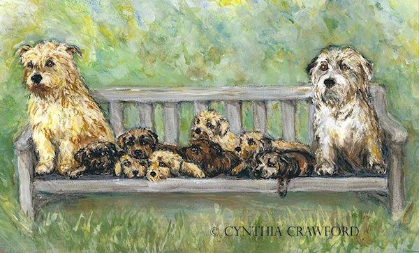 Glen of Imaal Terrier,color,irish,terrier,Teastas Misneach,Irish Terrier,