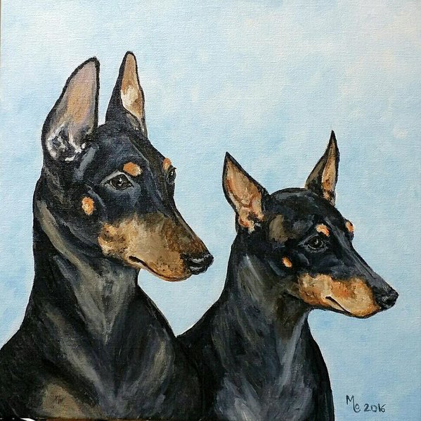 Manchester Terrier,rat terrier,nickname,The Groom's Pocket Piece,earthdog,akc