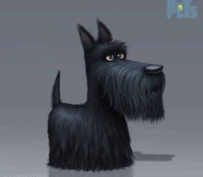 Scottish Terrier,color,genetics,The Secret Life of Pets,Ludo Gavillet