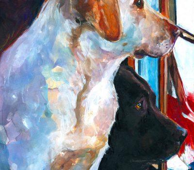 Labrador Retriever, Earl of Malmesbury, Newfoundland,St. John's dogs