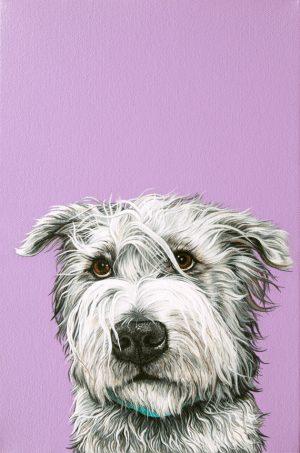 Glen of Imaal Terrier, Oliver Cromwell, New Model Army, Queen Elizabeth I,