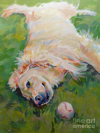Golden Retriever,AKC,obedience,Lord Tweedmouth