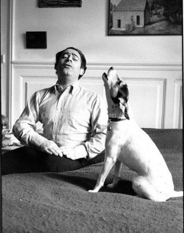 Jack Russell Terrier,Roland Topor,Fantastic Planet,Dadaist,Rolling Stone,