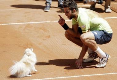 Pomeranian,tennis,Leo,Jiri Vesely,Czech Open