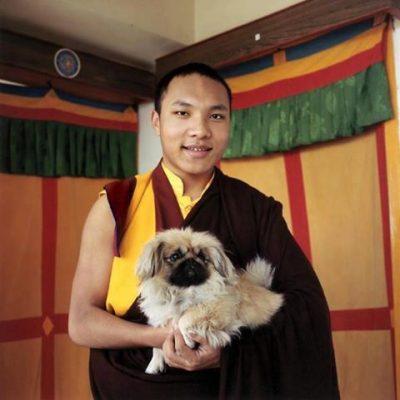 Karmapa,Dalai Lama,Pekingese,Tibetan Buddhism,Ogyen Trinley Dorje