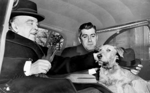 Irish Terrier, Pat, Prime Minister William Lyon Mackenzie King, Godfroy and Joan Patteson, Canada,