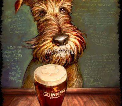 Irish Terrier,Ghillie,