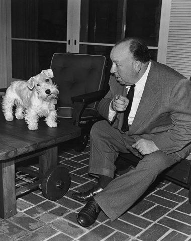 Alfred Hitchcock,Sealyham Terrier,Tallulah Bankhead,English Cocker Spaniel,Madeleine Carroll