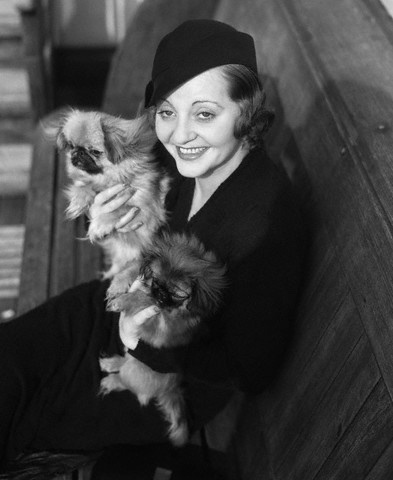 Tallulah Bankhead,pekingese,wire haired terrier
