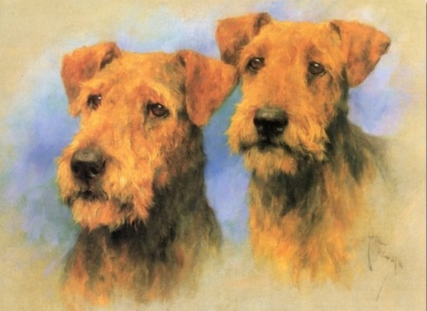 Airedale Terrier,Waterside Terrier,Bingley Terrier,Airedale Orchestra,Keighley and District Orchestral Society,history