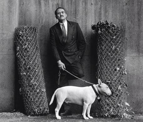 Bull Terrier,James Ellroy,Barko, Dudley,writer,fiction,The Black Dahlia,L.A. Confidential