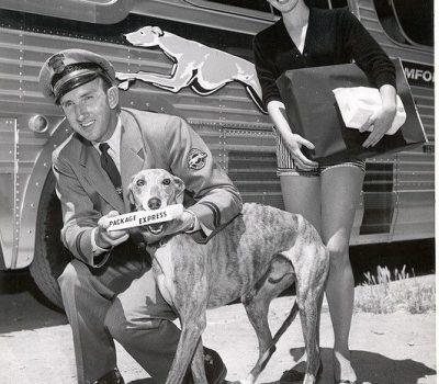 Greyhound,Steverino,Jack Benny Show,Greyhound Package Express,mascot