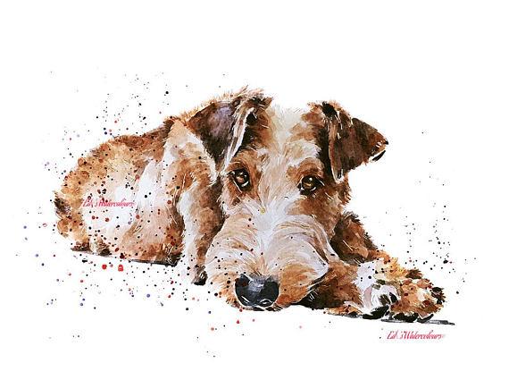 Irish Terrier,Wee Jock,history,Noah
