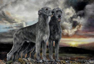 Irish Wolfhound Irish Wolfhound,Irish Guards' 16th Regiment,mascot,captain george graham