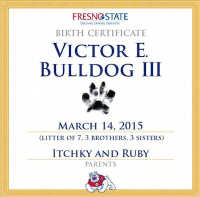 bulldog,mascot,Fresno State,