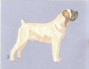 Boerboel,molosser,mastiff,breed specific legislation