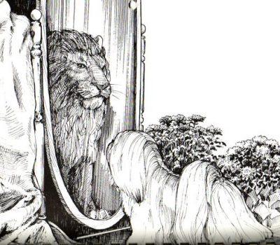 Lhasa Apso, Apso Seng-kyi,bearded lion dog, Snow Lion,