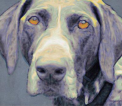 dogs,Thomas McGuane,