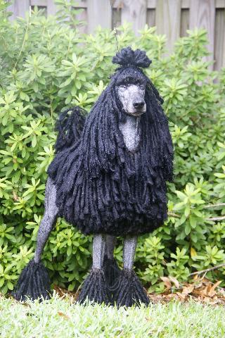 Poodle,corded Poodle,coat,hair,grooming,Mr. Joseph J. Genarella,Ch Achilles