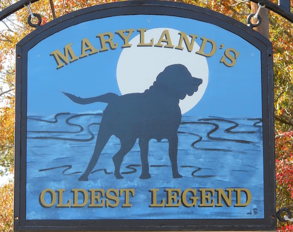 Blue Tick Coonhound,dog,ghost,General Joseph Hooker,Blue Dog Saloon,Charles Howard Sims