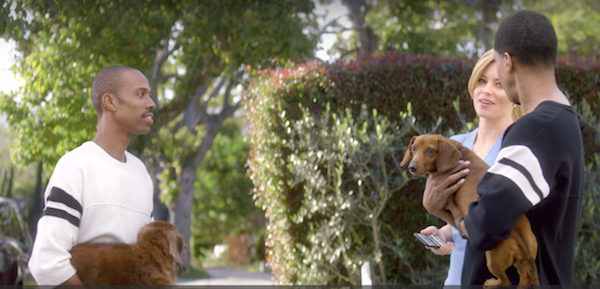 Dachshund, TV, commercial, advertising,