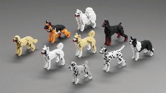 Lego,dog